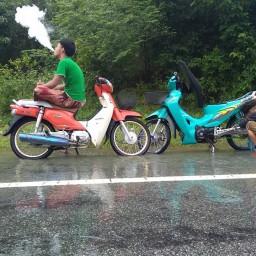 เซิฟ Rov Thailand