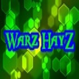 เซิฟ Warz HayZ