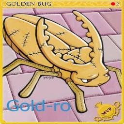 เซิฟ เปิด18/11/59 17.00 น.Gold-ro Hi Class